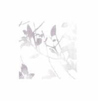 Tapet BN 17590 10 x 0.53 m, pret / rola